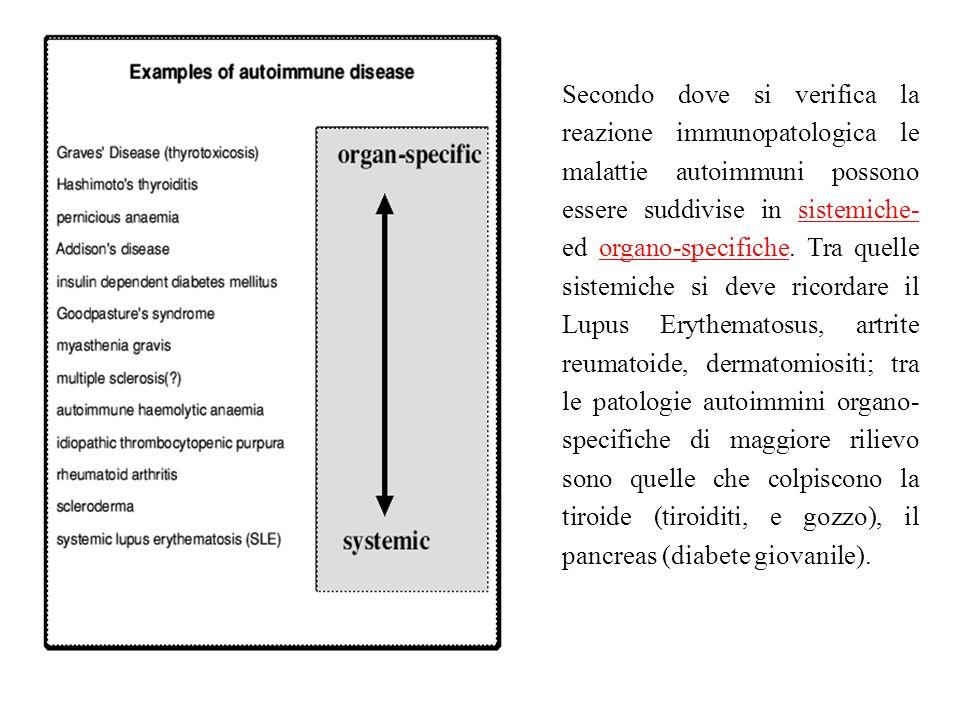 Secondo dove si verifica la reazione immunopatologica le malattie autoimmuni possono essere suddivise in sistemiche- ed organo-specifiche. Tra quelle