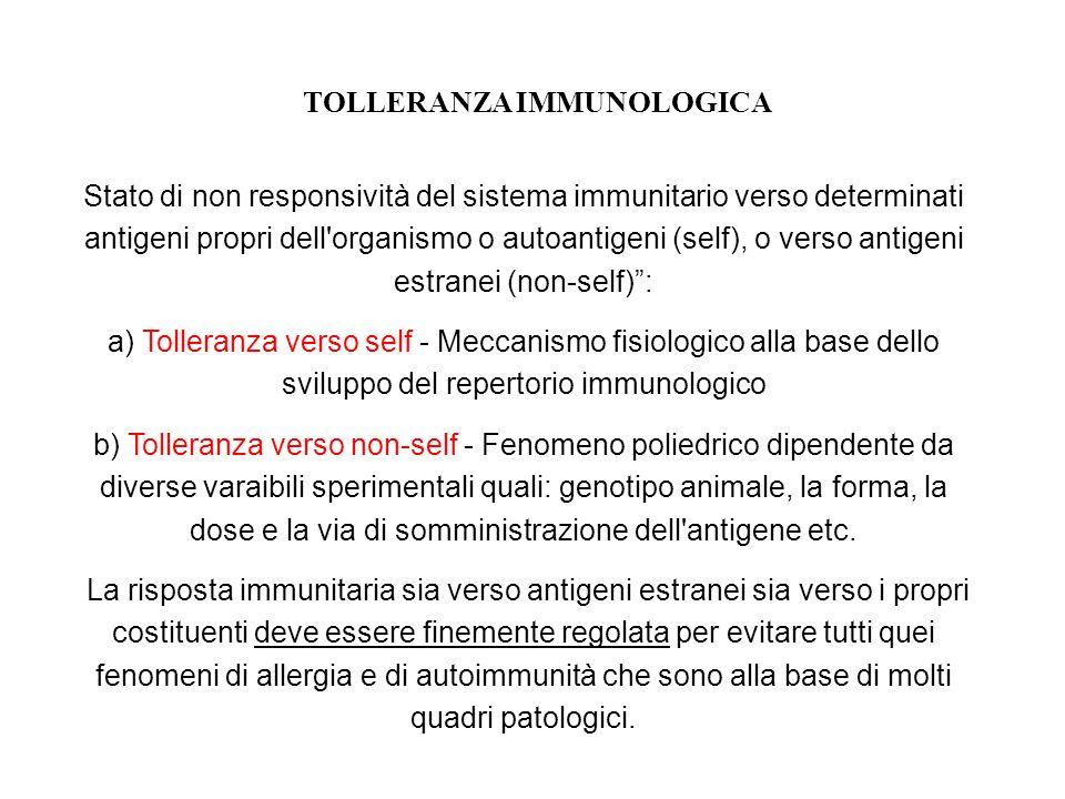 TOLLERANZA IMMUNOLOGICA Stato di non responsività del sistema immunitario verso determinati antigeni propri dell'organismo o autoantigeni (self), o ve