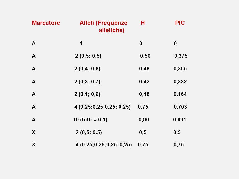 MarcatoreAlleli (Frequenze H PIC alleliche) A1 0 0 A 2 (0,5; 0,5) 0,50 0,375 A 2 (0,4; 0,6) 0,48 0,365 A 2 (0,3; 0,7) 0,42 0,332 A 2 (0,1; 0,9) 0,18 0