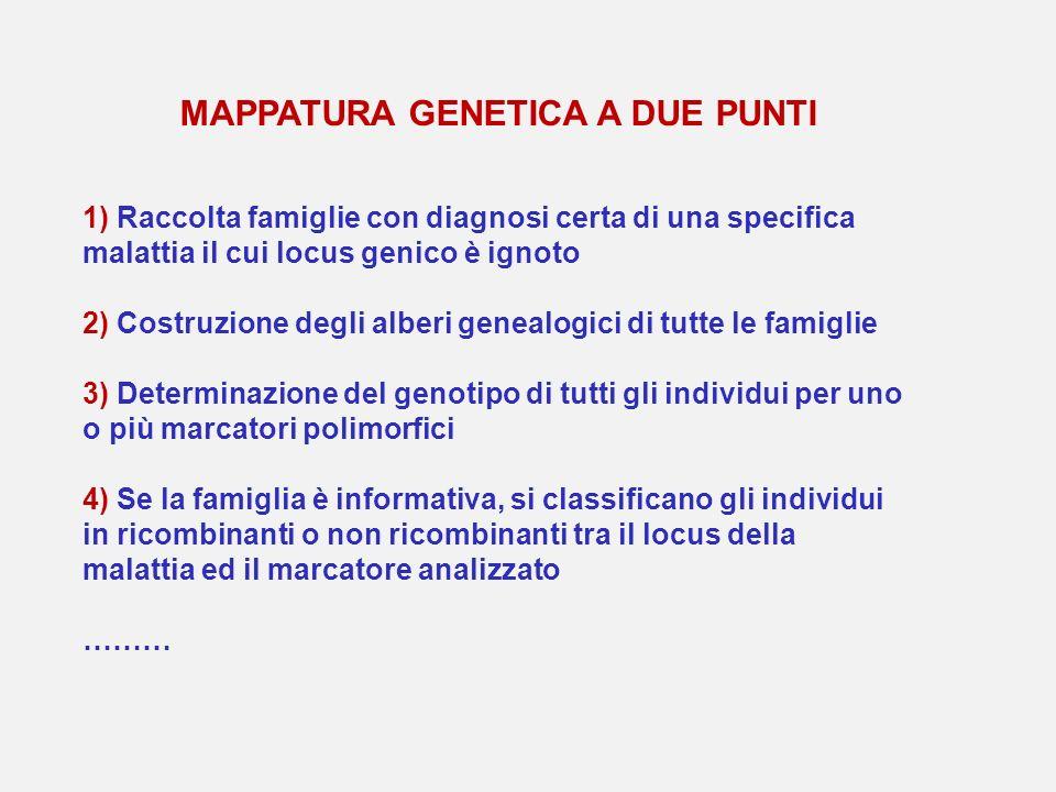 1) Raccolta famiglie con diagnosi certa di una specifica malattia il cui locus genico è ignoto 2) Costruzione degli alberi genealogici di tutte le fam