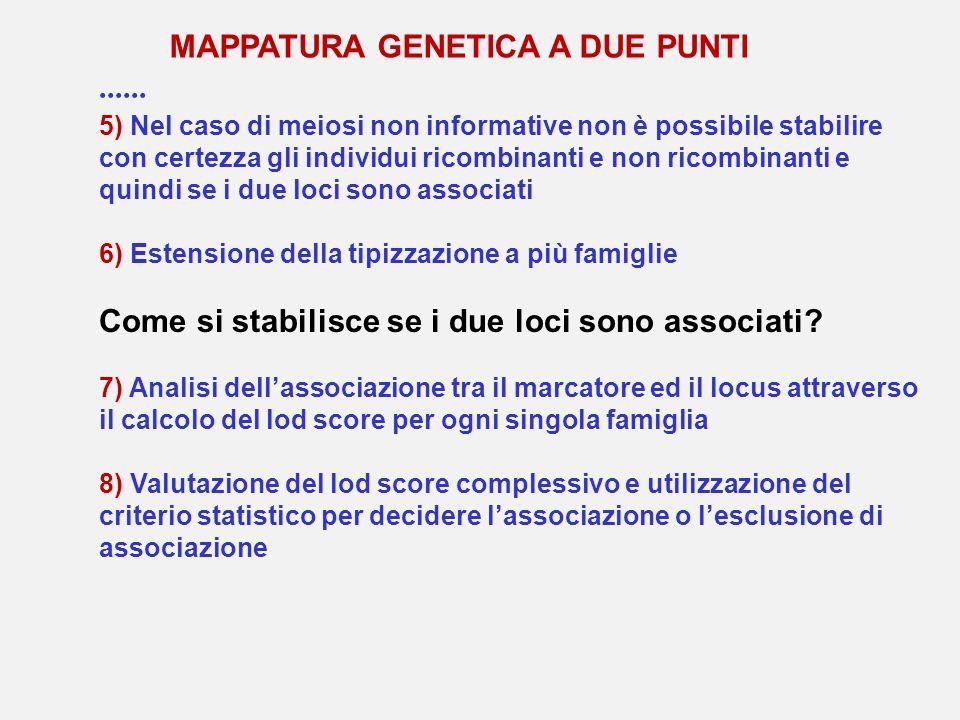 5) Nel caso di meiosi non informative non è possibile stabilire con certezza gli individui ricombinanti e non ricombinanti e quindi se i due loci sono
