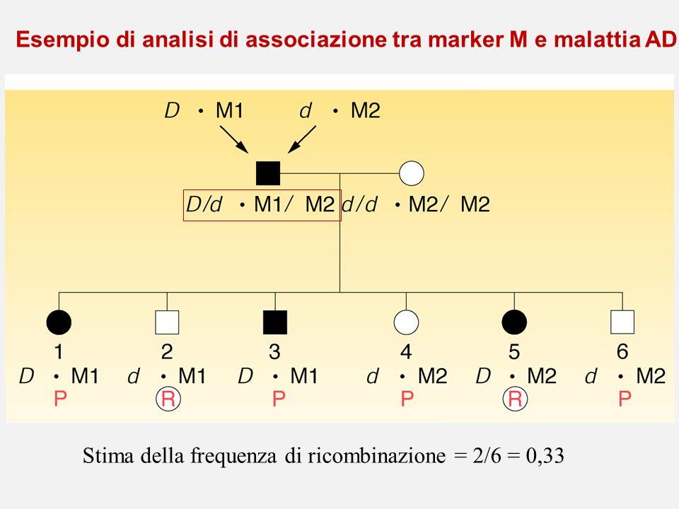 Esempio di analisi di associazione tra marker M e malattia AD Stima della frequenza di ricombinazione = 2/6 = 0,33