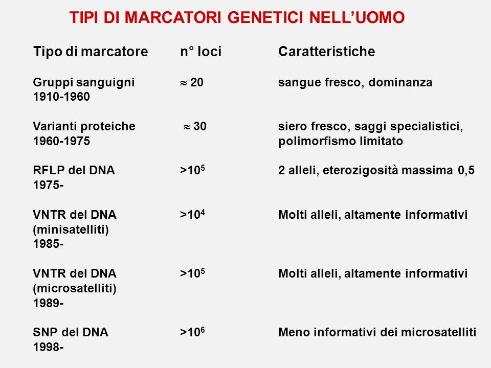 TIPI DI MARCATORI GENETICI NELLUOMO Tipo di marcatoren° lociCaratteristiche Gruppi sanguigni 20sangue fresco, dominanza 1910-1960 Varianti proteiche 3