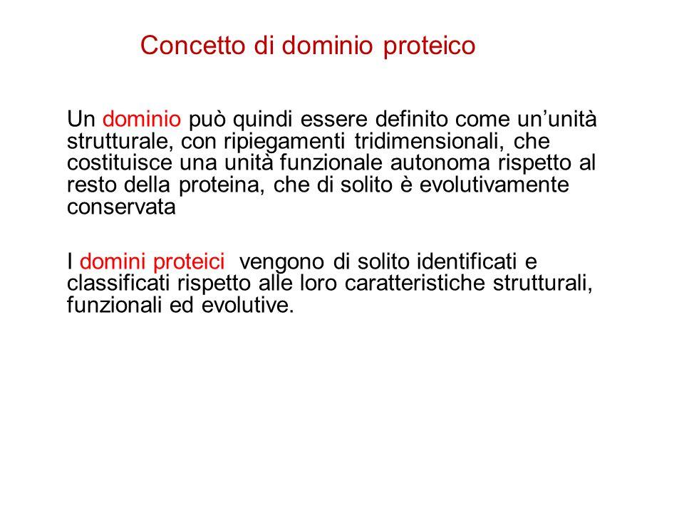 Un dominio può quindi essere definito come ununità strutturale, con ripiegamenti tridimensionali, che costituisce una unità funzionale autonoma rispet