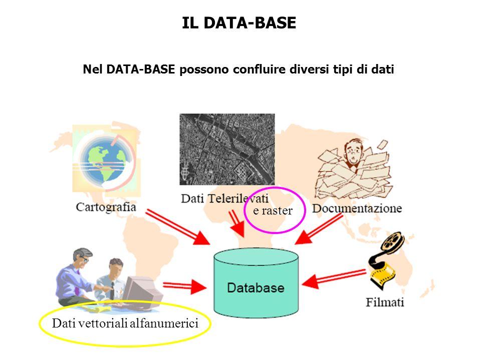 IL DATA-BASE Nel DATA-BASE possono confluire diversi tipi di dati Dati vettoriali alfanumerici e raster