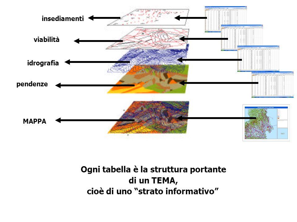 Ogni tabella è la struttura portante di un TEMA, cioè di uno strato informativo insediamenti viabilità idrografia pendenze MAPPA
