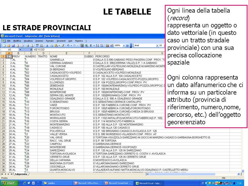 LE TABELLE LE STRADE PROVINCIALI Ogni linea della tabella (record) rappresenta un oggetto o dato vettoriale (in questo caso un tratto stradale provinc