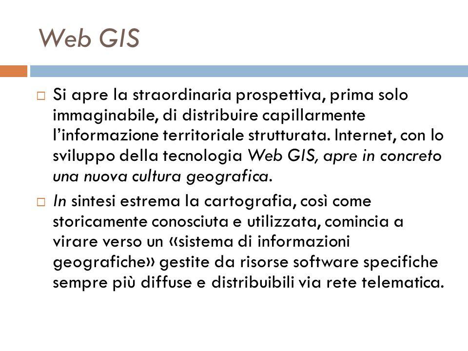 Web GIS Si apre la straordinaria prospettiva, prima solo immaginabile, di distribuire capillarmente linformazione territoriale strutturata.