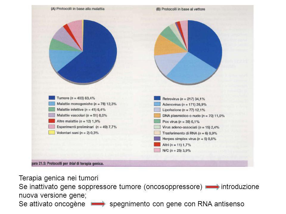 Terapia genica nei tumori Se inattivato gene soppressore tumore (oncosoppressore) introduzione nuova versione gene; Se attivato oncogène spegnimento con gene con RNA antisenso