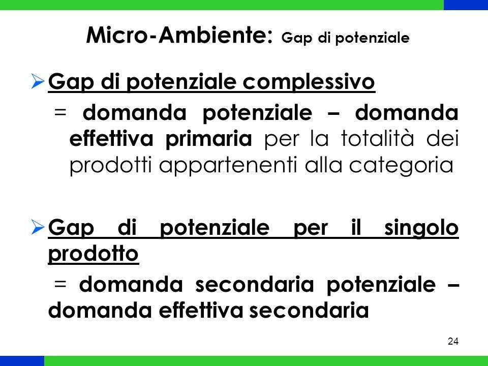 24 Micro-Ambiente: Gap di potenziale Gap di potenziale complessivo = domanda potenziale – domanda effettiva primaria per la totalità dei prodotti appartenenti alla categoria Gap di potenziale per il singolo prodotto = domanda secondaria potenziale – domanda effettiva secondaria