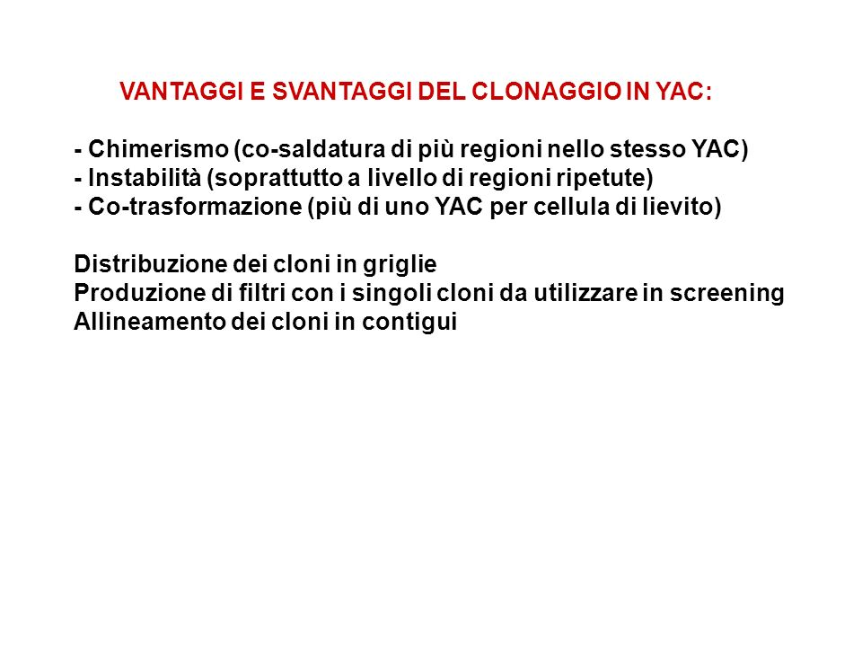 VANTAGGI E SVANTAGGI DEL CLONAGGIO IN YAC: - Chimerismo (co-saldatura di più regioni nello stesso YAC) - Instabilità (soprattutto a livello di regioni