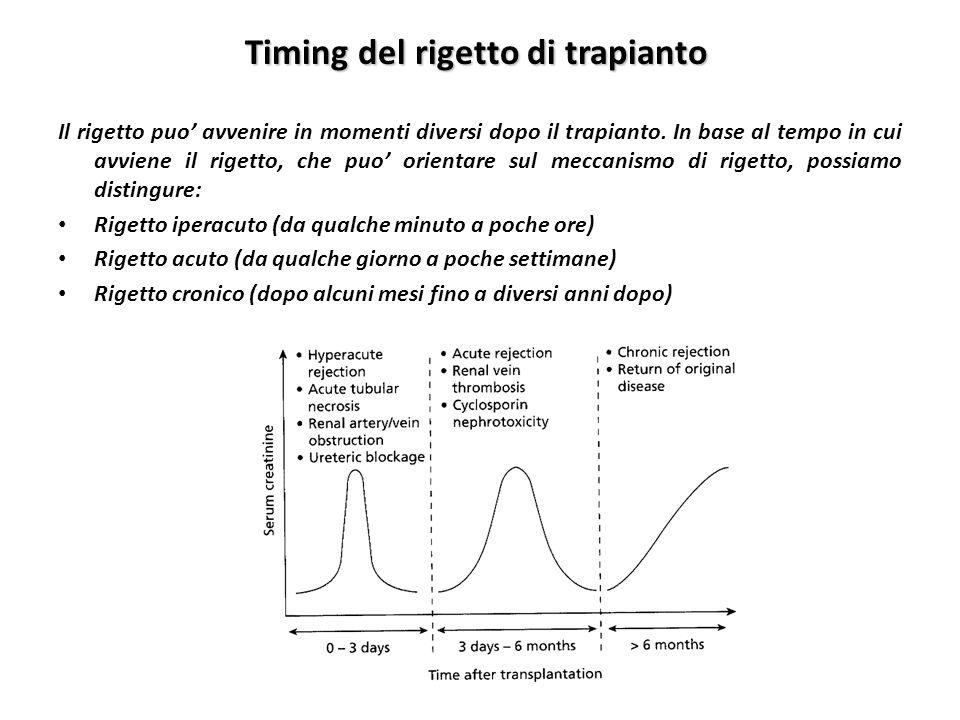Timing del rigetto di trapianto Il rigetto puo avvenire in momenti diversi dopo il trapianto. In base al tempo in cui avviene il rigetto, che puo orie