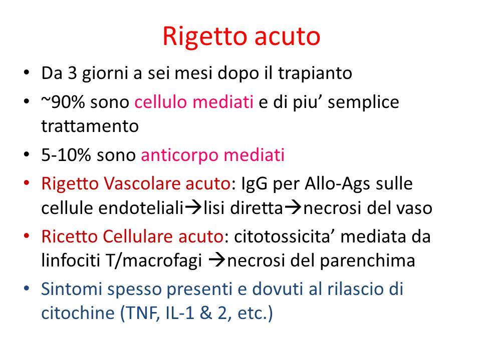 Rigetto acuto Da 3 giorni a sei mesi dopo il trapianto ~90% sono cellulo mediati e di piu semplice trattamento 5-10% sono anticorpo mediati Rigetto Va