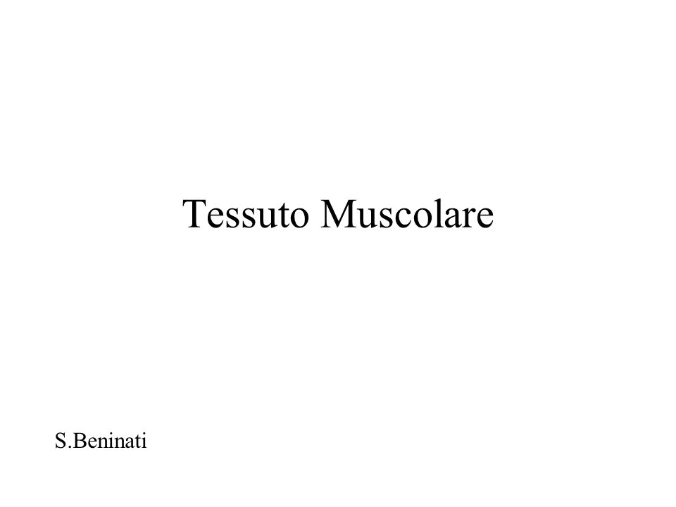 Muscolo striato Lezioni di Istologia BCM/BU