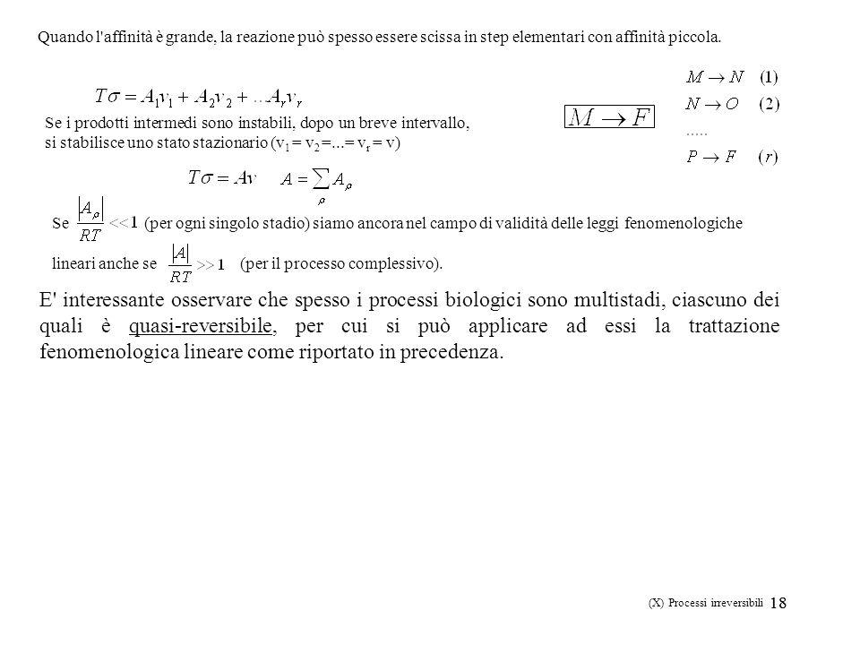 18 (X) Processi irreversibili Quando l'affinità è grande, la reazione può spesso essere scissa in step elementari con affinità piccola. Se i prodotti