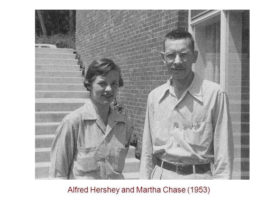 Alfred Hershey and Martha Chase (1953)