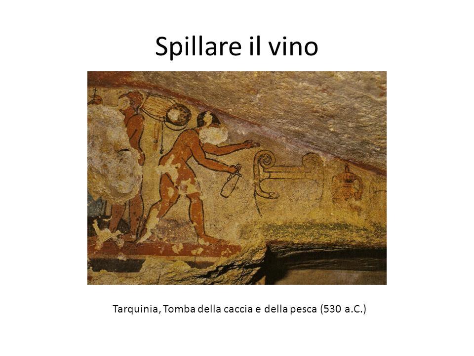 Spillare il vino Tarquinia, Tomba della caccia e della pesca (530 a.C.)