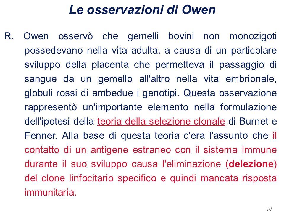 10 Le osservazioni di Owen R. Owen osservò che gemelli bovini non monozigoti possedevano nella vita adulta, a causa di un particolare sviluppo della p