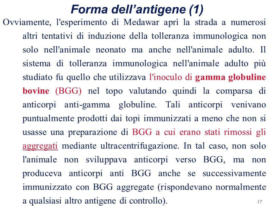 17 Forma dellantigene (1) Ovviamente, l'esperimento di Medawar aprì la strada a numerosi altri tentativi di induzione della tolleranza immunologica no