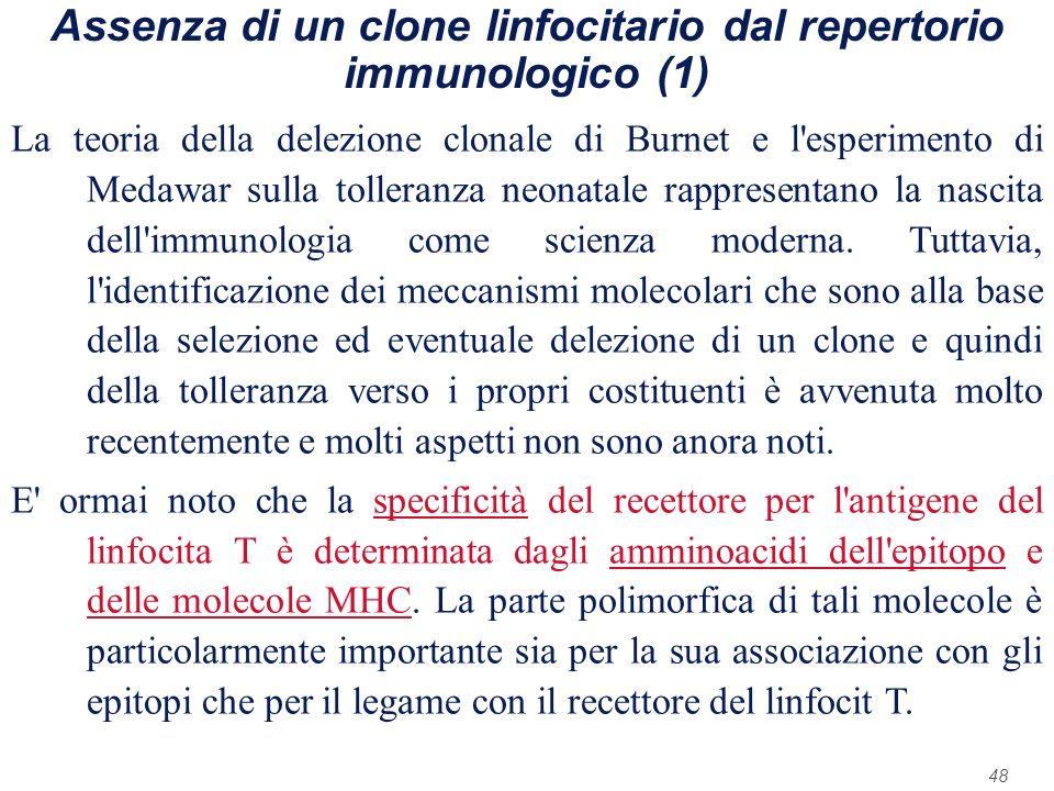 48 Assenza di un clone linfocitario dal repertorio immunologico (1) La teoria della delezione clonale di Burnet e l'esperimento di Medawar sulla tolle