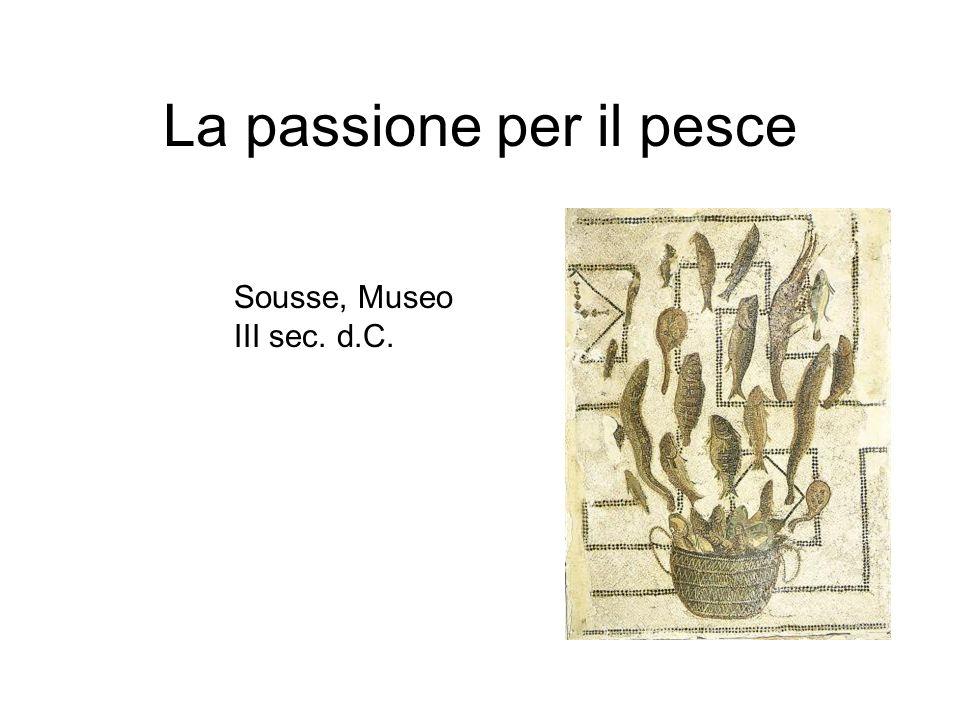 La passione per il pesce Sousse, Museo III sec. d.C.