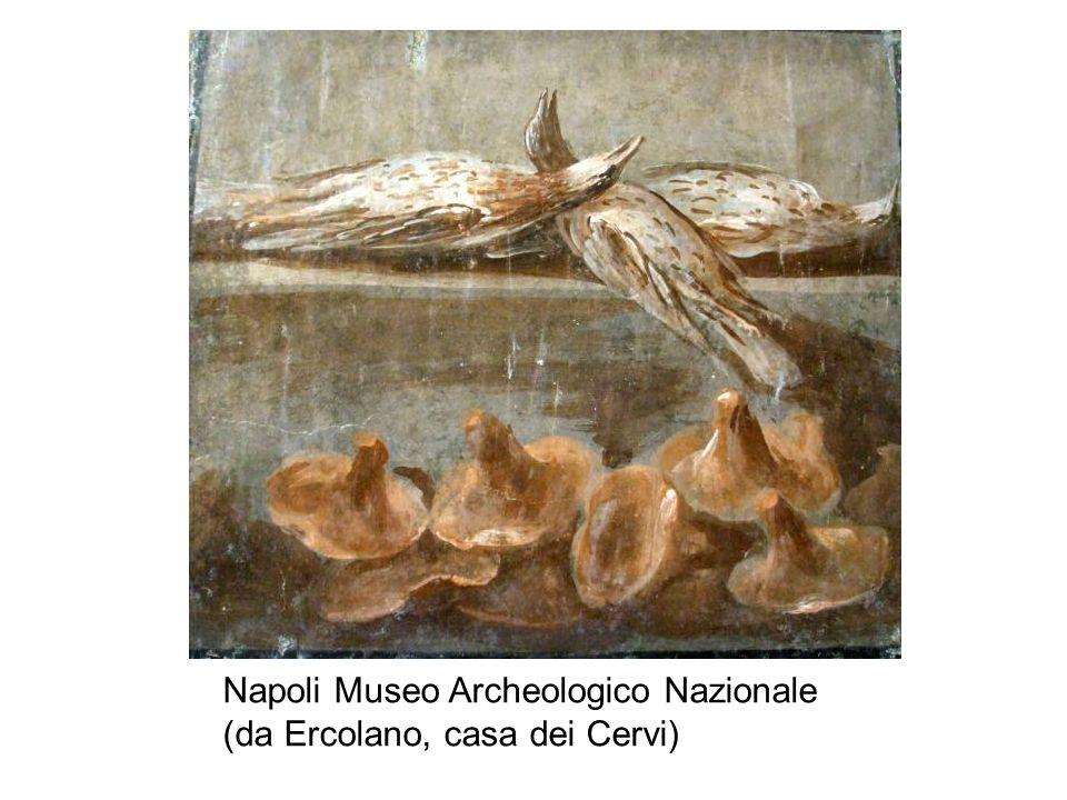 Napoli Museo Archeologico Nazionale (da Ercolano, casa dei Cervi)