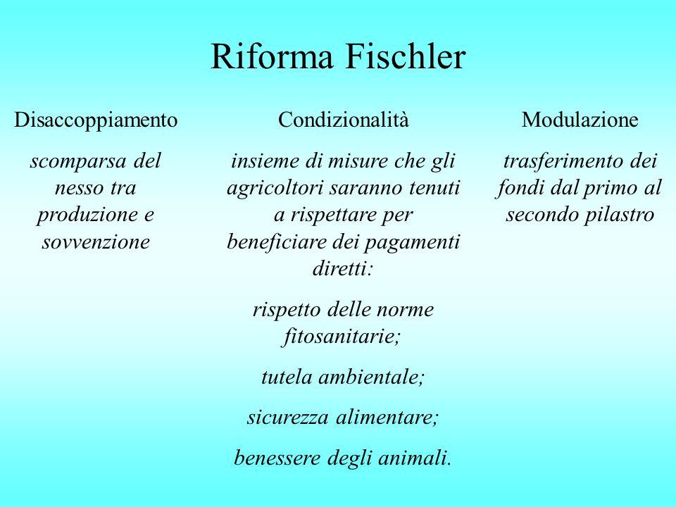 Riforma Fischler Disaccoppiamento scomparsa del nesso tra produzione e sovvenzione Condizionalità insieme di misure che gli agricoltori saranno tenuti