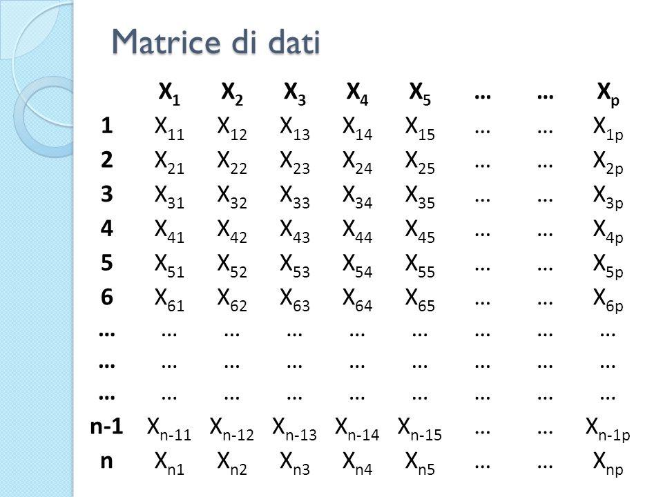 Matrice di dati X1X1 X2X2 X3X3 X4X4 X5X5 ……XpXp 1X 11 X 12 X 13 X 14 X 15 ……X 1p 2X 21 X 22 X 23 X 24 X 25 ……X 2p 3X 31 X 32 X 33 X 34 X 35 ……X 3p 4X 41 X 42 X 43 X 44 X 45 ……X 4p 5X 51 X 52 X 53 X 54 X 55 ……X 5p 6X 61 X 62 X 63 X 64 X 65 ……X 6p ……………………… ……………………… ……………………… n-1X n-11 X n-12 X n-13 X n-14 X n-15 ……X n-1p nX n1 X n2 X n3 X n4 X n5 ……X np