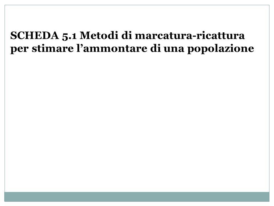 SCHEDA 5.1 Metodi di marcatura-ricattura per stimare lammontare di una popolazione