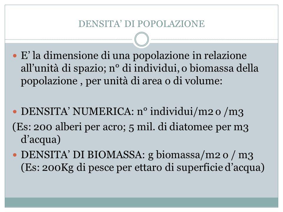 DENSITA DI POPOLAZIONE E la dimensione di una popolazione in relazione allunità di spazio; n° di individui, o biomassa della popolazione, per unità di