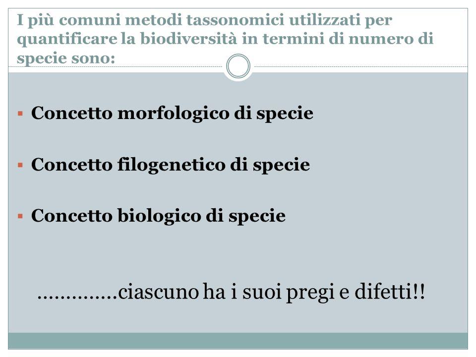 I più comuni metodi tassonomici utilizzati per quantificare la biodiversità in termini di numero di specie sono: Concetto morfologico di specie Concet