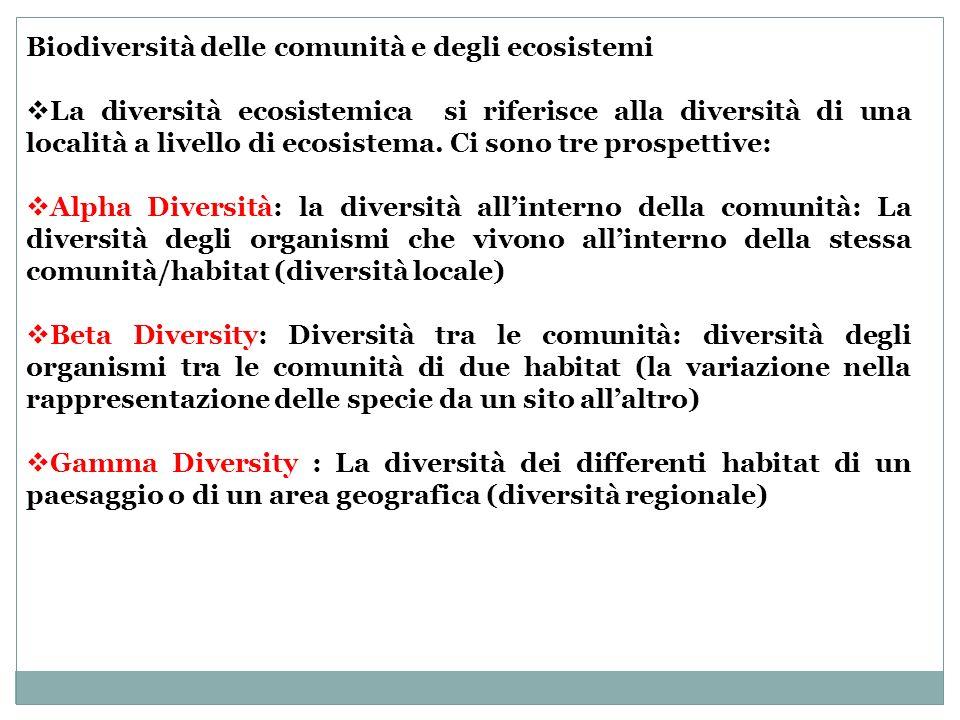 Biodiversità delle comunità e degli ecosistemi La diversità ecosistemica si riferisce alla diversità di una località a livello di ecosistema. Ci sono