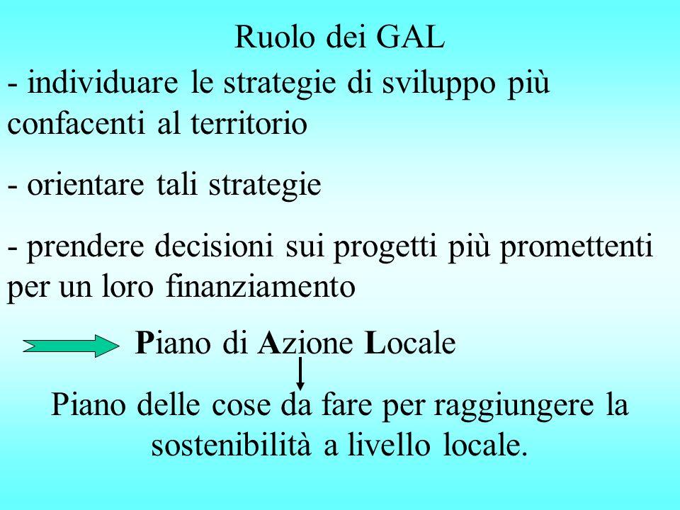Ruolo dei GAL - individuare le strategie di sviluppo più confacenti al territorio - orientare tali strategie - prendere decisioni sui progetti più promettenti per un loro finanziamento Piano di Azione Locale Piano delle cose da fare per raggiungere la sostenibilità a livello locale.