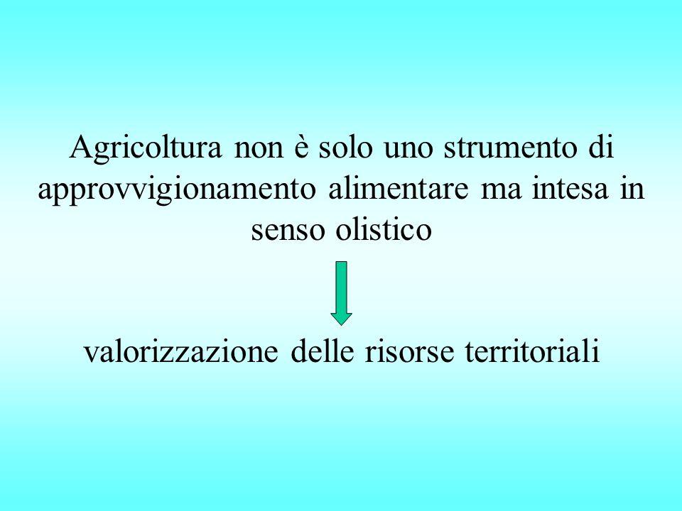 Agricoltura non è solo uno strumento di approvvigionamento alimentare ma intesa in senso olistico valorizzazione delle risorse territoriali