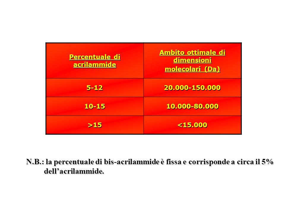 Percentuale di acrilammide Ambito ottimale di dimensioni molecolari (Da) 5-1220.000-150.000 10-1510.000-80.000 >15<15.000 N.B.: la percentuale di bis-acrilammide è fissa e corrisponde a circa il 5% dellacrilammide.