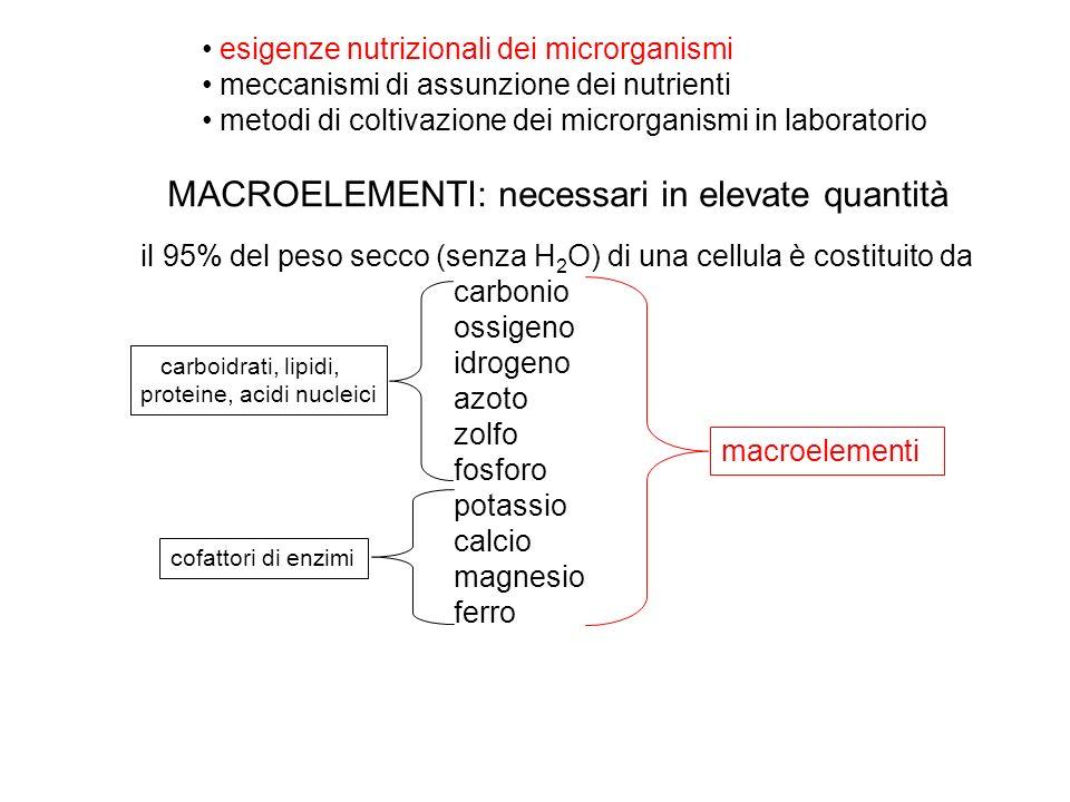 esigenze nutrizionali dei microrganismi meccanismi di assunzione dei nutrienti metodi di coltivazione dei microrganismi in laboratorio il 95% del peso secco (senza H 2 O) di una cellula è costituito da carbonio ossigeno idrogeno azoto zolfo fosforo potassio calcio magnesio ferro macroelementi carboidrati, lipidi, proteine, acidi nucleici cofattori di enzimi MACROELEMENTI: necessari in elevate quantità