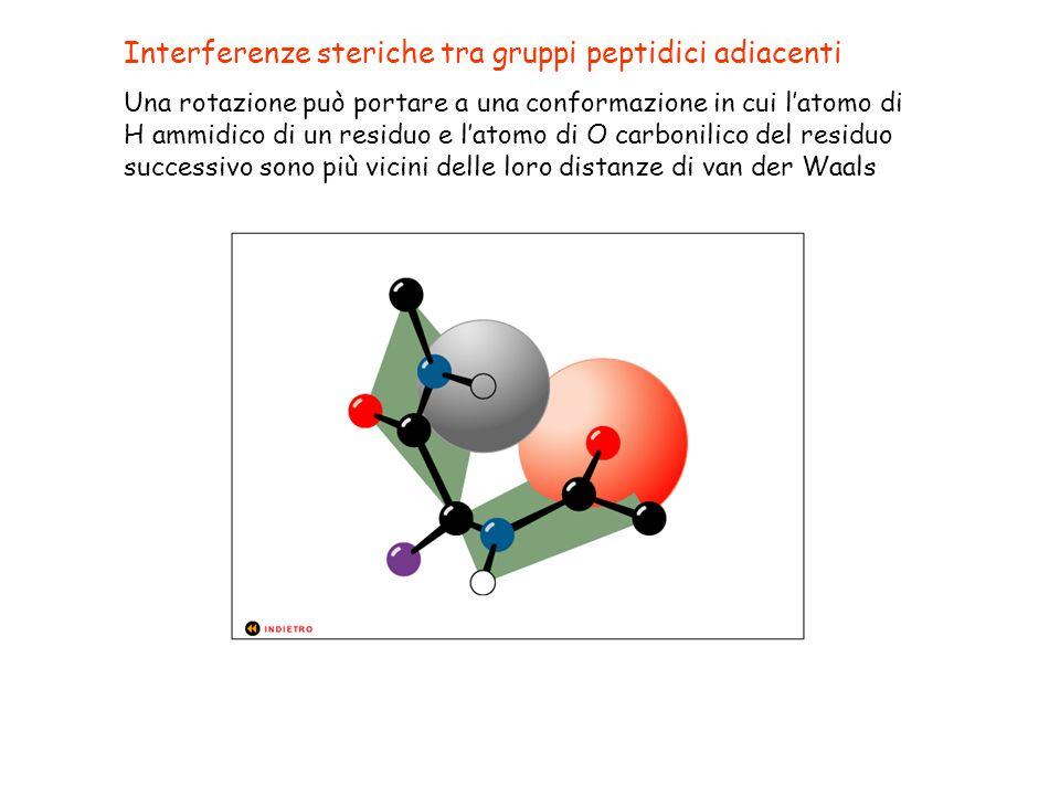 Interferenze steriche tra gruppi peptidici adiacenti Una rotazione può portare a una conformazione in cui latomo di H ammidico di un residuo e latomo