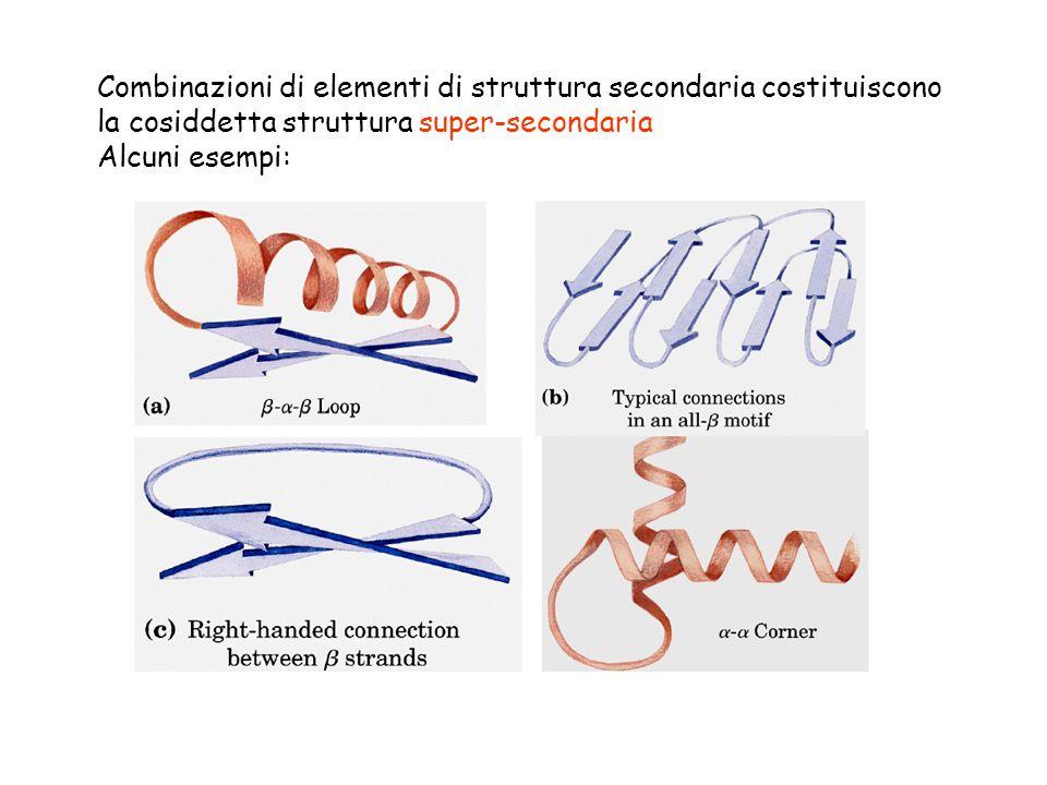 Combinazioni di elementi di struttura secondaria costituiscono la cosiddetta struttura super-secondaria Alcuni esempi:
