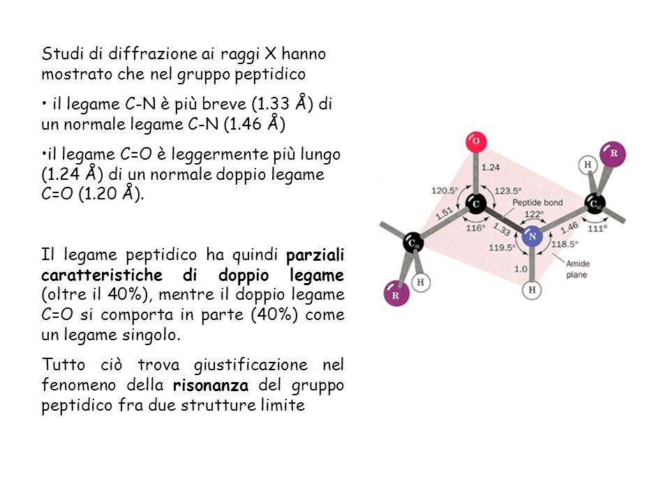 Studi di diffrazione ai raggi X hanno mostrato che nel gruppo peptidico il legame C-N è più breve (1.33 Å) di un normale legame C-N (1.46 Å) il legame