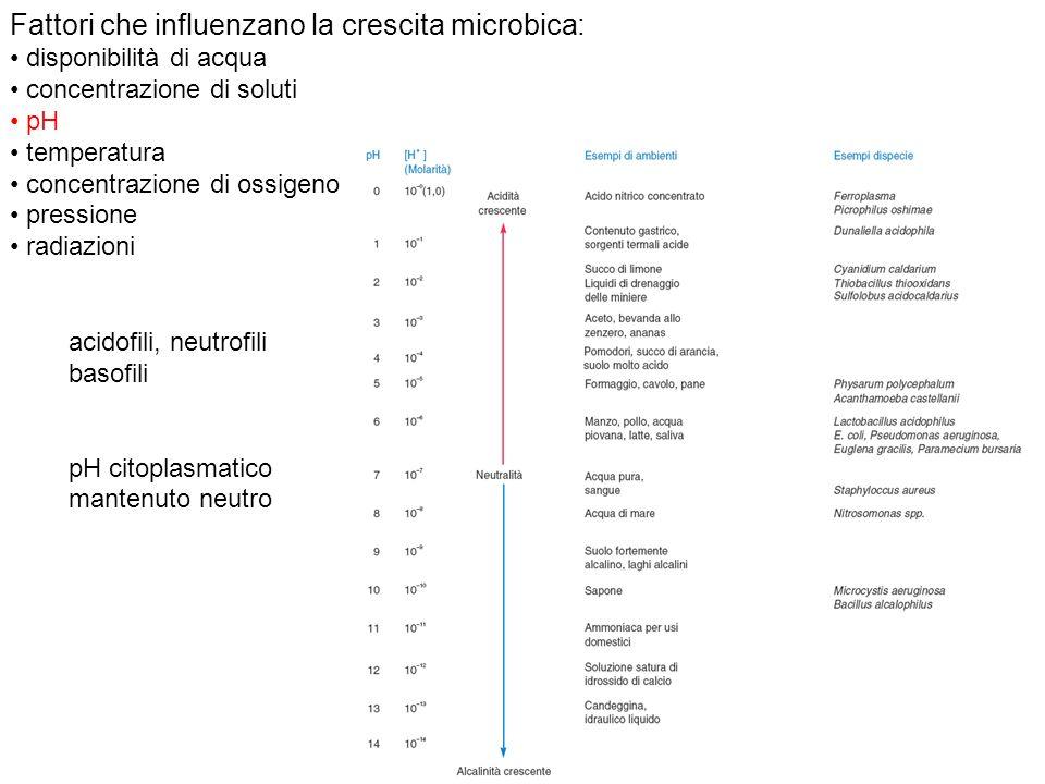 Fattori che influenzano la crescita microbica: disponibilità di acqua concentrazione di soluti pH temperatura concentrazione di ossigeno pressione rad