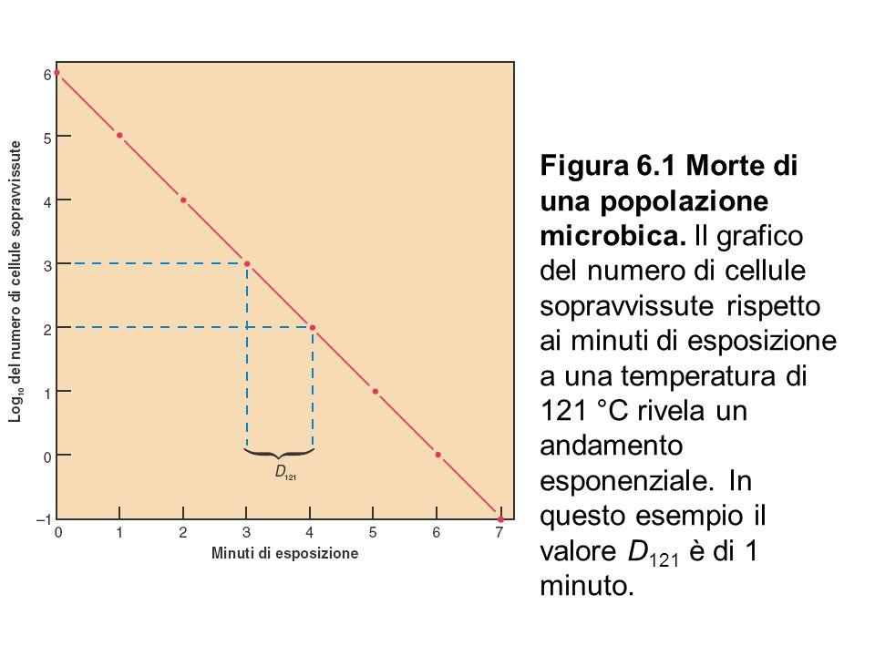 Figura 6.1 Morte di una popolazione microbica. Il grafico del numero di cellule sopravvissute rispetto ai minuti di esposizione a una temperatura di 1
