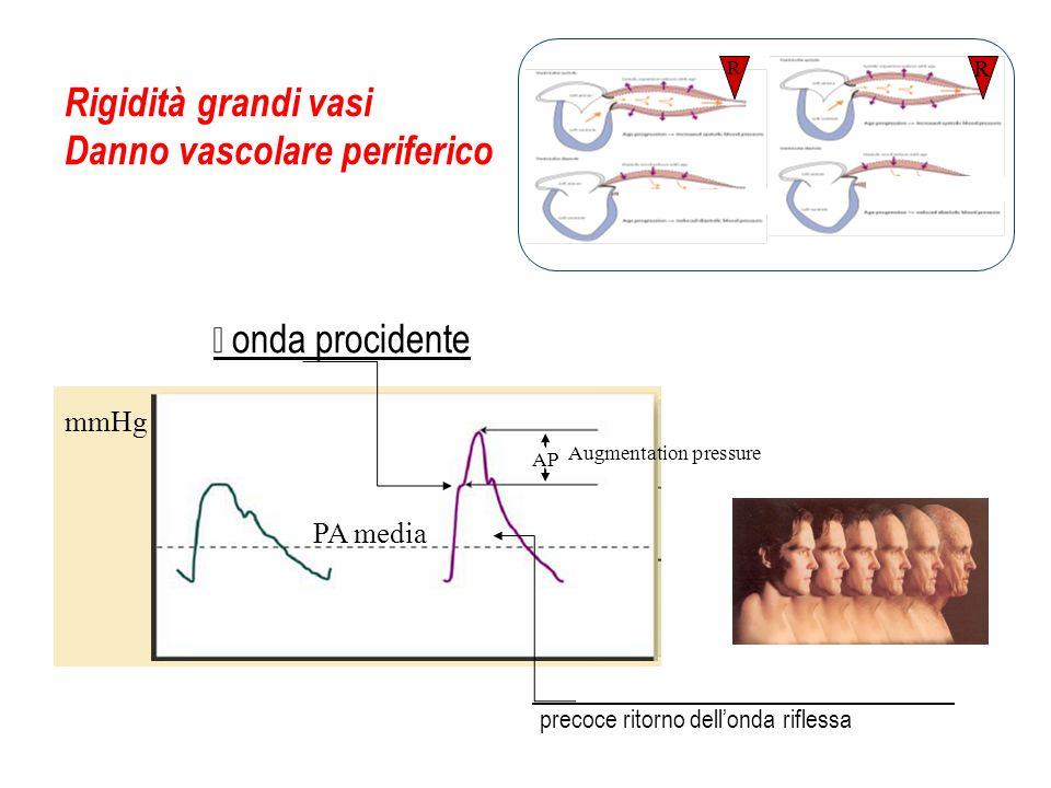 Rigidità grandi vasi Danno vascolare periferico PA media mmHg AP Augmentation pressure R R onda procidente precoce ritorno dellonda riflessa