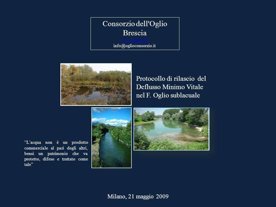 Milano, 21 maggio 2009 Protocollo di rilascio del Deflusso Minimo Vitale nel F. Oglio sublacuale Consorzio dell'Oglio Brescia www.laghi.net info@oglio