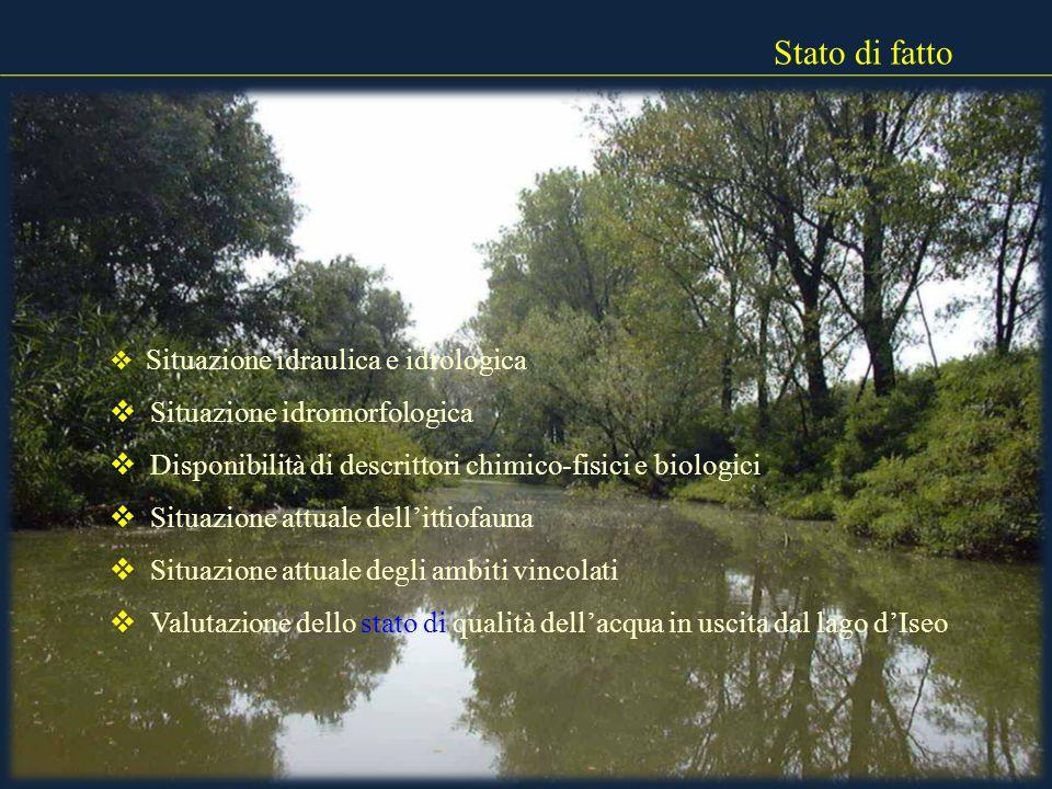 Stato di fatto Situazione idraulica e idrologica Situazione idromorfologica Disponibilità di descrittori chimico-fisici e biologici Situazione attuale