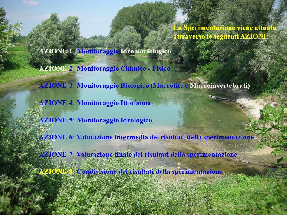 AZIONE 1: Monitoraggio Idromorfologico AZIONE 2: Monitoraggio Chimico - Fisico AZIONE 3: Monitoraggio Biologico (Macrofite e Macroinvertebrati) AZIONE
