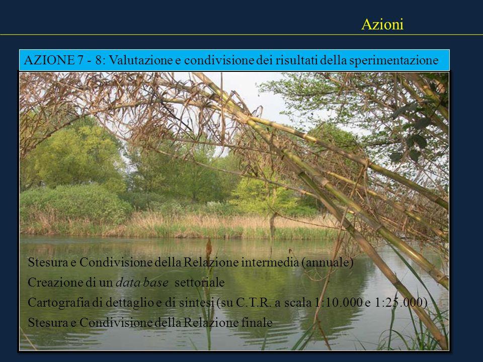 Azioni AZIONE 7 - 8: Valutazione e condivisione dei risultati della sperimentazione Stesura e Condivisione della Relazione intermedia (annuale) Creazi