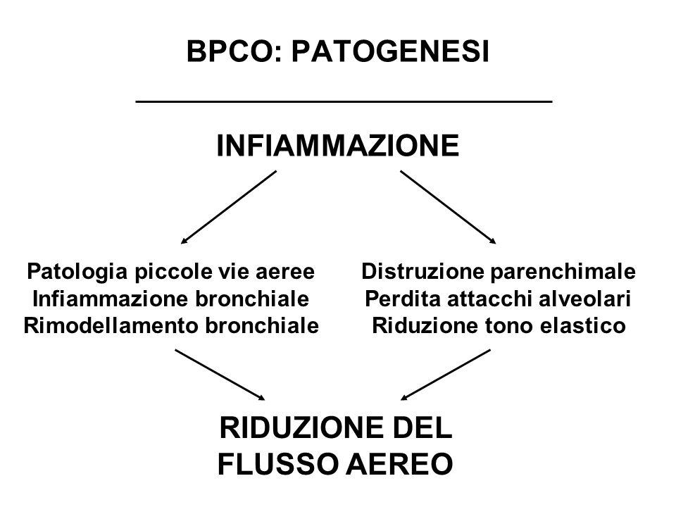 BPCO: PATOGENESI INFIAMMAZIONE Patologia piccole vie aeree Infiammazione bronchiale Rimodellamento bronchiale Distruzione parenchimale Perdita attacch