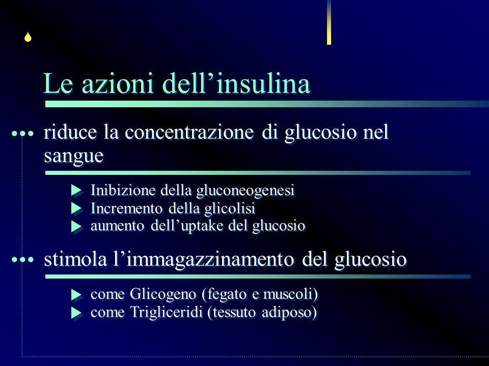 riduce la concentrazione di glucosio nel sangue riduce la concentrazione di glucosio nel sangue... Inibizione della gluconeogenesi Incremento della gl