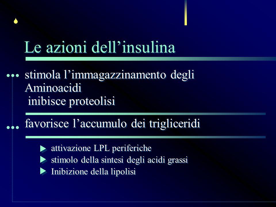 stimola limmagazzinamento degli Aminoacidi inibisce proteolisi stimola limmagazzinamento degli Aminoacidi inibisce proteolisi... Le azioni dellinsulin