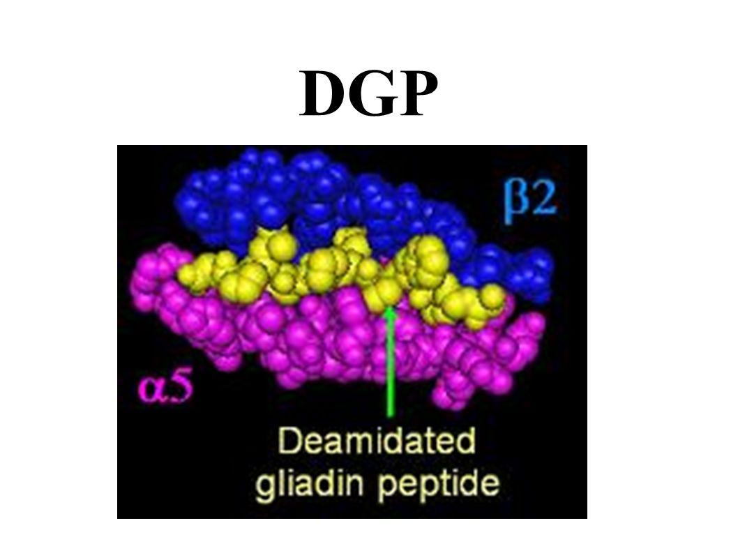 Celiac Disease NEJM 2007; 357:1731-1743 Peter H.R. Green and Christophe Cellier